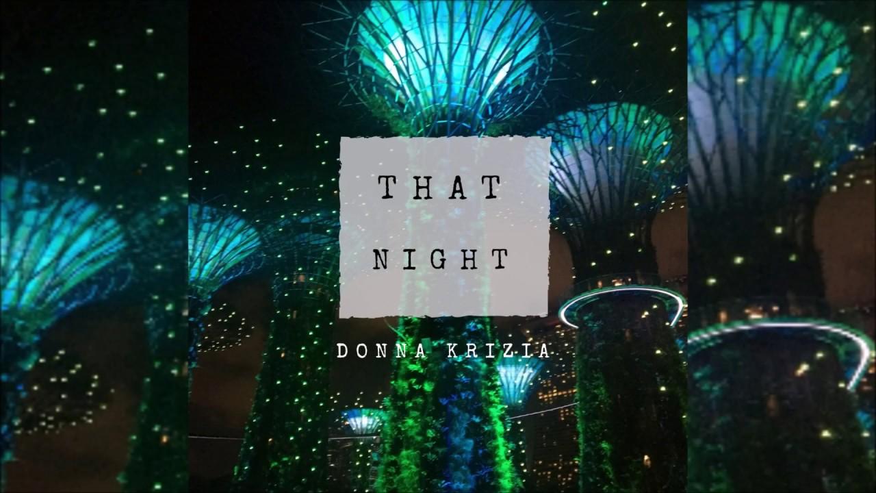 That Night - Donna Krizia