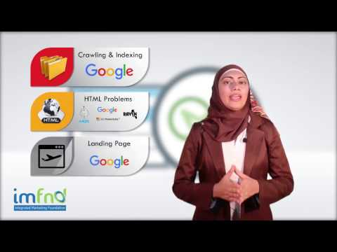 SEO Strategy - Situation Analysis - Shereen Badr