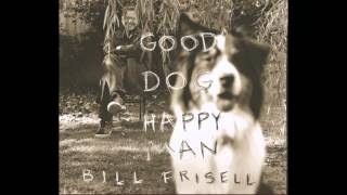 Bill Frisell ― Big Shoe