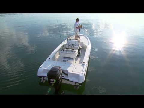 Triton 220 LTS Introduction