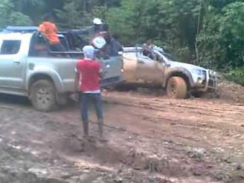Angkutan Manokwari-Bintuni Papua Barat 2