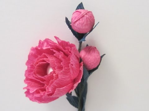 HOW TO MAKE PAPER PEONY FLOWERS