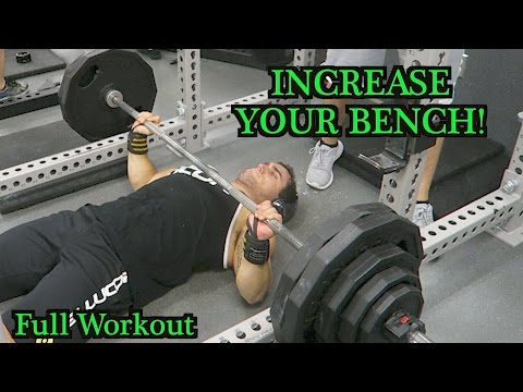 Full Workout to INCREASE Bench Press