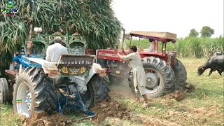 Tractor Stunt | 6 Tractors Trying to Pull out the Trailer | Ford & Massey Together