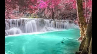 видео красивые картинки лето