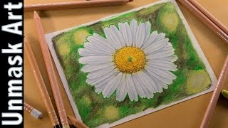 Daisy Flower | Colored Pencil Drawing Time Lapse