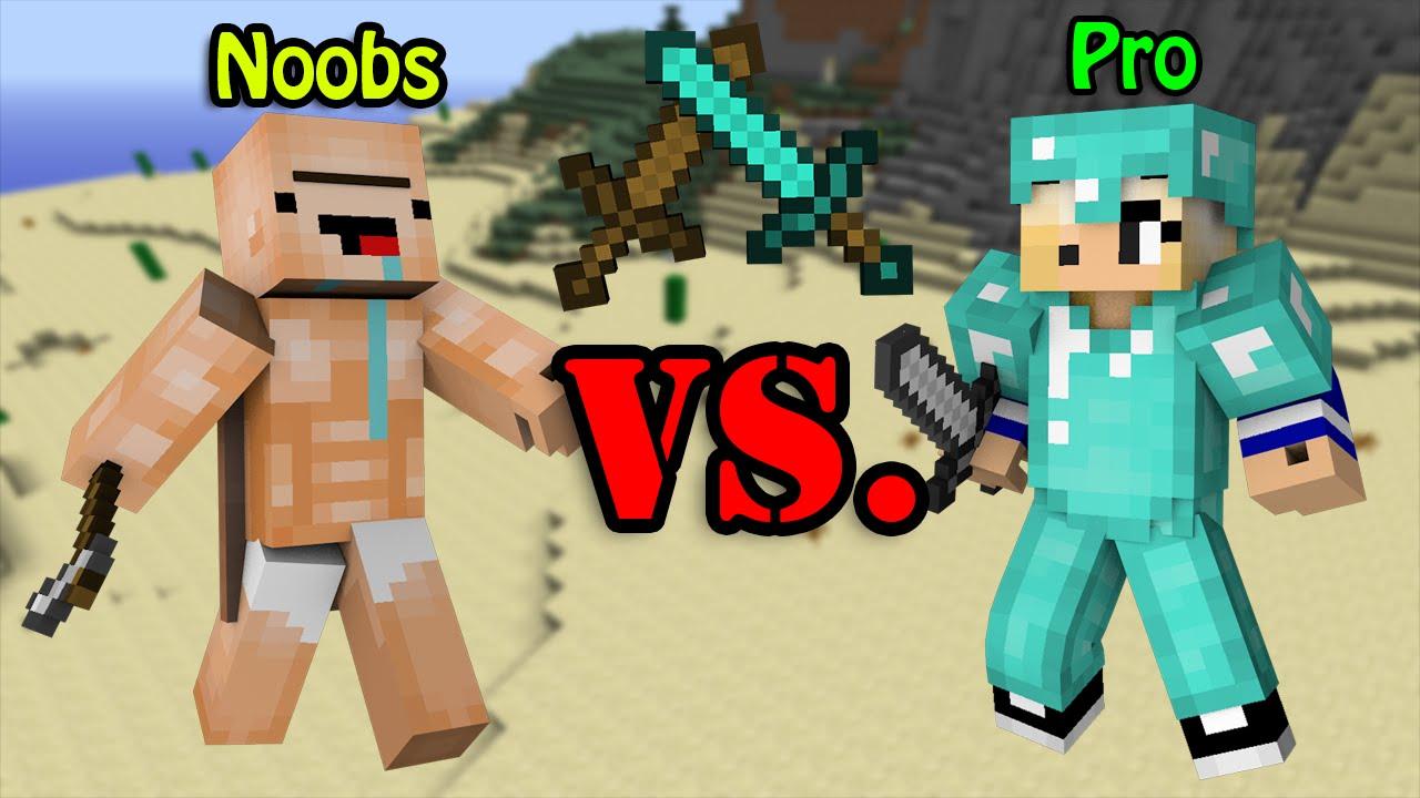 noobs vs pro minecraft