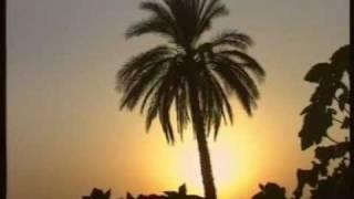 Delailü& 39 l Hayrat Perşembe Günü Okunacak Dua