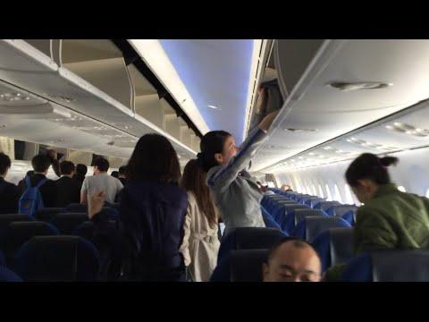 All Nippon Airways (ANA) B787-8 (JA817A) 飛行機 搭乗