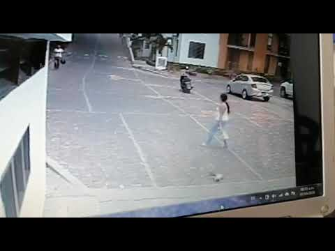 Gato asesinado en La Morada del Viento en Neiva