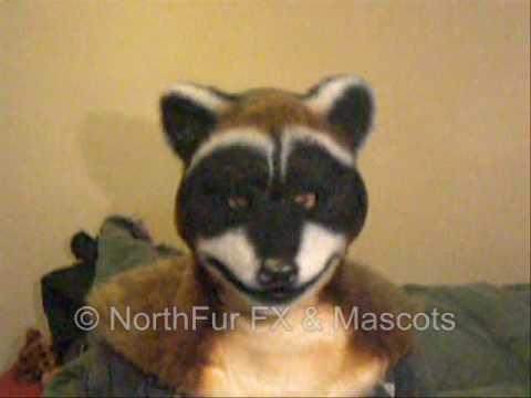Raccoon Full Head Mask