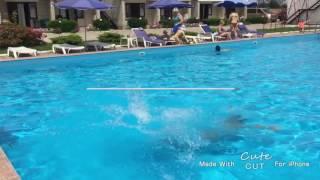 Купание в бассейне , ожидание vs реальность ,или как я училась прыгать рыбкой!Видео-ПРИКОЛ(Только начинаю снимать видео,подписывайтесь ,ставьте ,буду рада видеть вас у себя !!!, 2016-07-22T19:24:45.000Z)