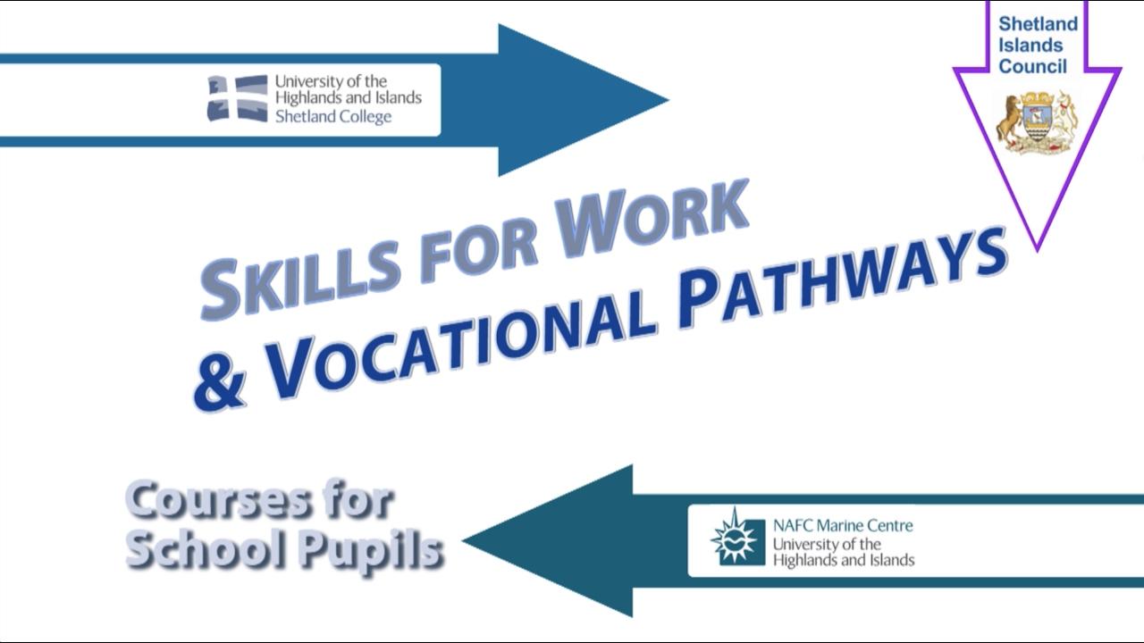 skills for work vocational pathways