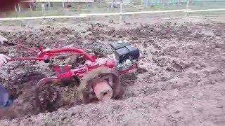 Вспашка огорода мотоблоком Беларус-09Н МТЗ ч2