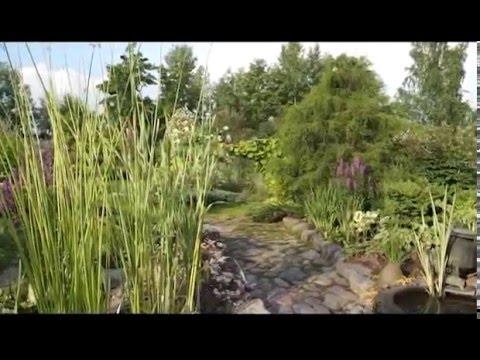 видео: Частный сад Ирины Пыжиковой возле Павловска под Санкт-Петербургом