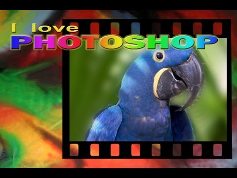 Come SFOCARE lo sfondo delle tue foto in Photoshop CC - Effetto Profondità di Campo from YouTube · Duration:  15 minutes 40 seconds