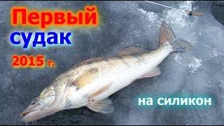 Зимняя рыбалка.Первый судак 2015 г. На силикон !