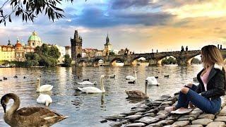 Влог: Сказочный город Прага, Пиво, Еда, обзор супермаркета(Мы Вконтакте: https://vk.com/public110216378 ----------------------------------------------------------------------------------------------- Инстаграмм Марии https://insta..., 2016-11-04T14:56:32.000Z)