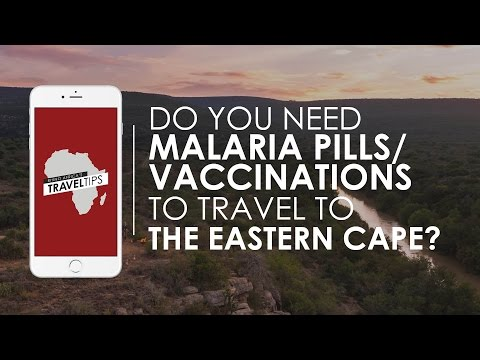 Do you need malaria pills/vaccinations to travel the Eastern Cape? Rhino Africa's Travel Tips