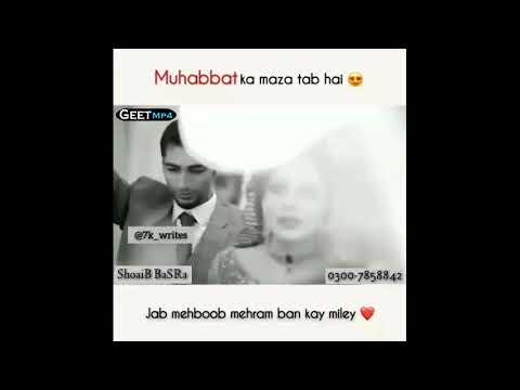 WhatsApp Stats Video || Geet Mp4 Pak