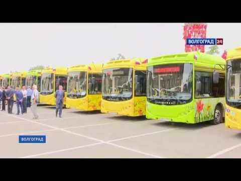 Новые автобусы в Волгограде