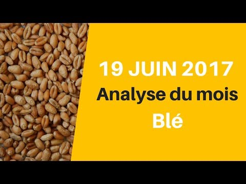[ COURS DU BLE ] Analyse JUIN 2017