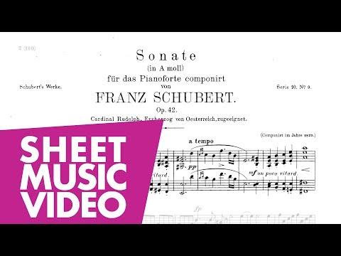 Schubert Piano Sonata No. 16 in A Minor D 845 (FULL)