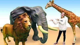 Видео игрушки для детей — Животные Collecta — Дикая природа