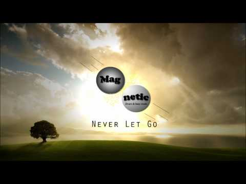 Total Recall feat. Mark McKenzie - Never Let Go (Subsonik Remix) (HQ)