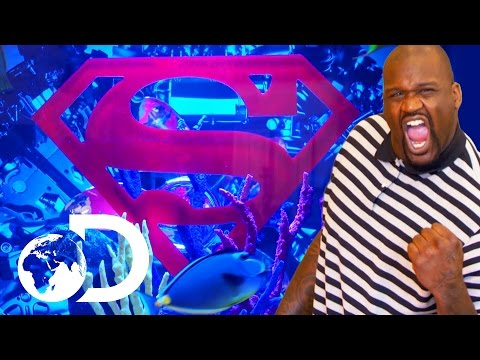 Pimped Out Tank For Shaquille O'Neal | Tanked