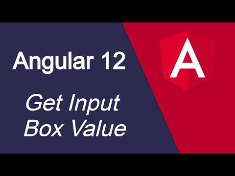 Angular 12 tutorial #11 Get Input field  Value