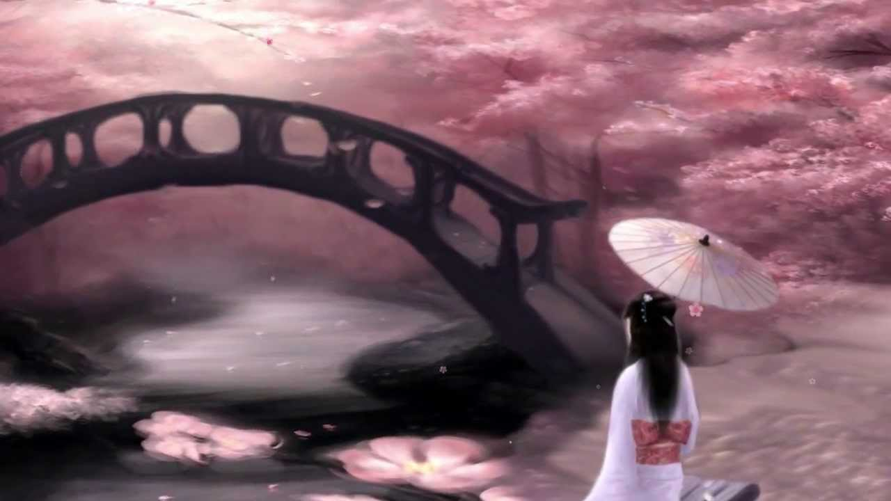 Falling Bridge Wallpaper Geisha Bridge Under Japanese Cherry Blossom Sakura Trees