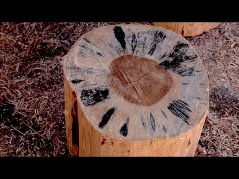 Отбеливатель для древесины  MegaSept. Тест на бревне.  Часть 1