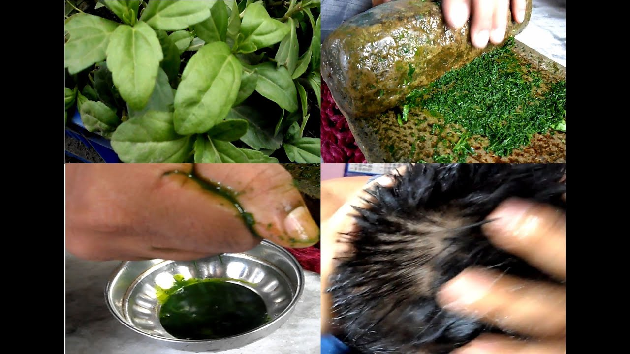 herbs used for hair growth
