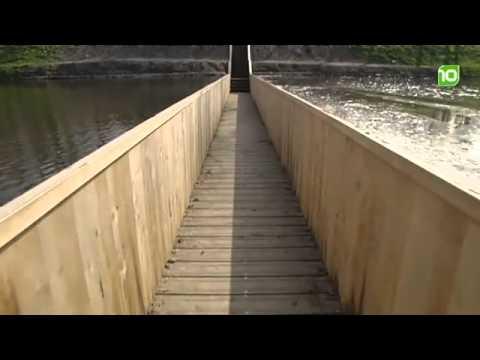 моисея мост фото