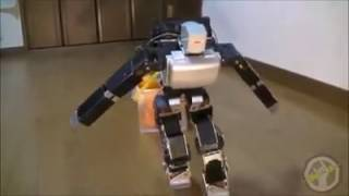 Toy Humanoid Robot that can pull and lift weights
