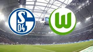 Schalke vs wolfsburg 1-1 alle tore und ...