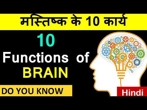 10 Functions of the Brain | Brain Functions in Hindi ...