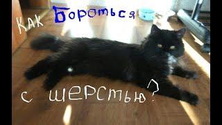 Как избавиться от шерсти кошки в квартире/Как бороться с линькой