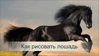 Как рисовать лошадь. Игорь Сахаров рассказывает как рисовать лошадь
