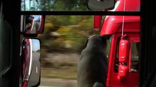 Bretagne mit TruckTV