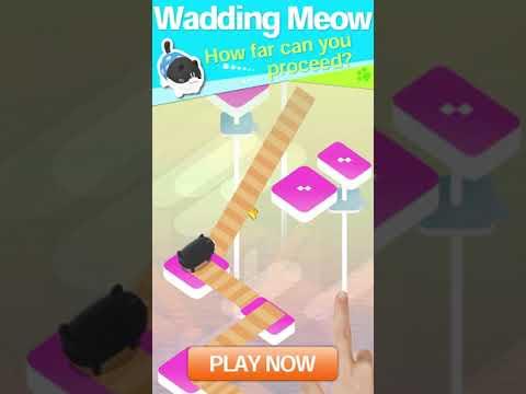Wadding Meow 1