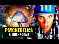 Personal Experiences With Magic Mushrooms! (Part 1)