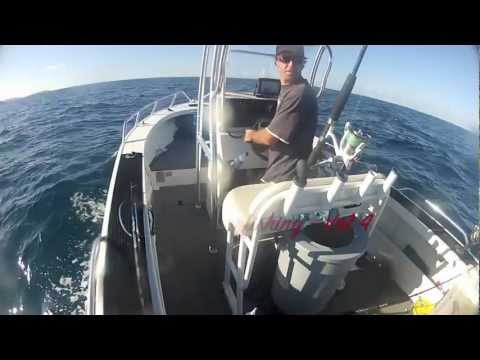 Central Coast Spearfishing - Vol 4