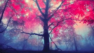 Sorrow - Dreamstone (feat. CoMa)