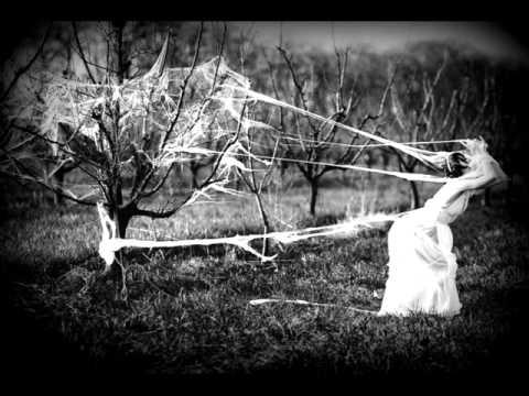 Dreams of Persecution - Dust of Basement (Remembrances 1997)