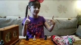 Шахматная фигура Слон (офицер). Обучение шахматам детей.