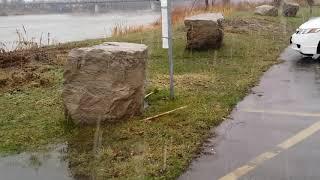 눈비 오는 날 York Park/Grand River …