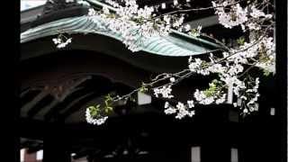 Repeat youtube video 歌謡芝居 九段の母 真木柚布子 【cover】
