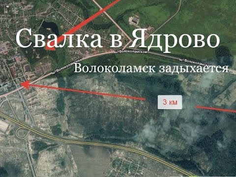 Картинки по запросу свалки под Волоколамском